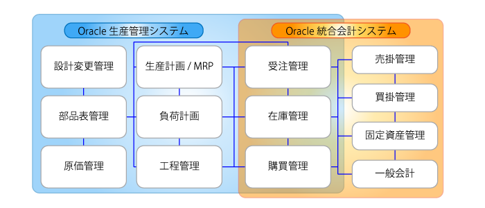 Oracle E-Business Suite の導入サービス 説明